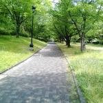 Photo of Central Park (Chuo Koen)