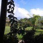 Cabañas Rapa Nui Orito