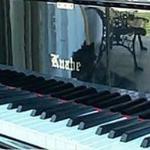 Baby Grand Piano Labby Area
