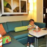 SpringHill Suites Detroit Southfield Foto