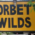 Corbett Wilds Resort