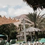 Foto de Ein Gedi Resort Hotel