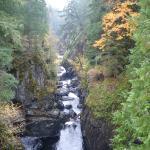 Englishman River Provincial Park