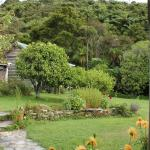 The Innlet Backpackers and Cottages Foto