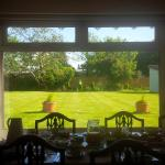 View from Dining room, along with a horse