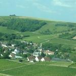 Sancerre wine region