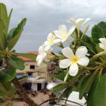 Foto de The Cashew Nut Guest House