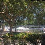 La Fontana Waterfront Grill & Pizzeria
