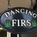 Photo de Dancing Firs Bed and Breakfast