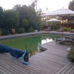La piscine et ses transats avec vue sur Table Mountain