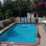 Large older pool
