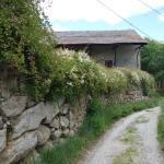 Stone farmhouses