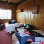 1 fold out, 1 reg, bed/livingroom