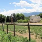 1900's farm