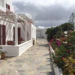 Domna Petinaros Apts Hotel Mykonos