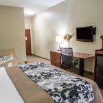 Foto de Sleep Inn & Suites Hotel Pearland - Houston South