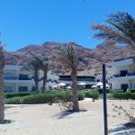 Hotel pohled z pláže