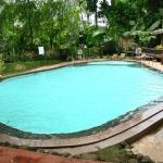 Thekkady Swimming Pool