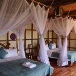 Foto de Bwindi Lodge