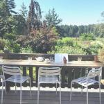 Nourish in the Garden - 505 Quayle Road, Saanich - Garden View