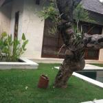 Foto de Villa Bali Asri