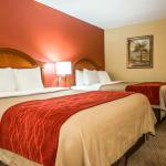 Comfort Inn And Suites Panama City