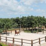 Konjicki klub Jakici Horse Riding