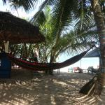 Foto de Hotel Frangipani Beach Villas