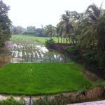Foto de Heaven Goa Guesthouse