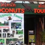 Coconut Tours - Day  Tours