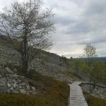 Path to top of the Ukko-Luosto