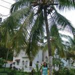 Foto de Colonia Santa Maria (CSM)