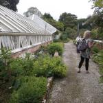 Tregrehan Green Houses