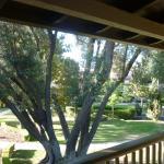 Foto de Paso Robles Inn