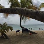 Foto de The Buccaneer -- St Croix