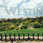Foto de Westin La Paloma Resort and Spa