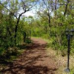 Landscape - Pineridge Hollow Photo