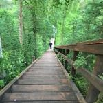 Billede af Kenai River Retreat