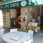 Photo of Tree of Life Vegetarian Cafe