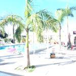 Foto de Gulf Tides Inn