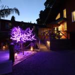 Night Lights Spa Apartment
