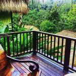 Foto de Nandini Bali Resort & Spa Ubud
