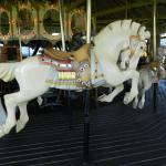 George W. Johnson Park Carousel