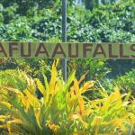 Afuaau Falls, Palauli, Savaii, Samoa