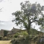 View of the cottage of Lucignanello / Vista del Podere di Lucignanello