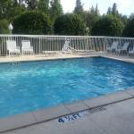 Small pool.