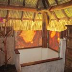 Exotic showers in bathrooms with private views to outside