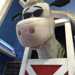 Reid's Dairy