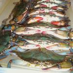 Desporte Seafood ,délicieux