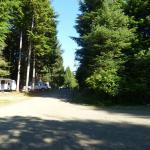 Back area campsites